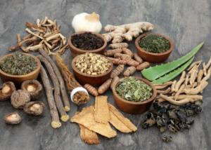 Adaptogenic herbs and spices, Aloe Vera, Liquorice, Aswagandha, Ginger,