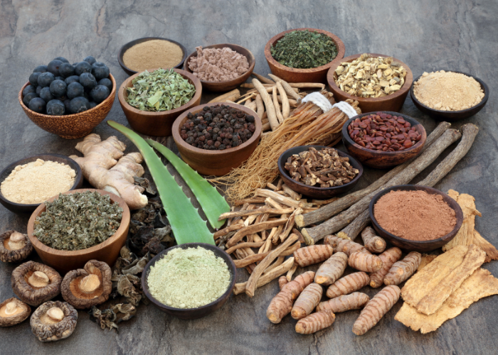 Different adaptogens and their benefits